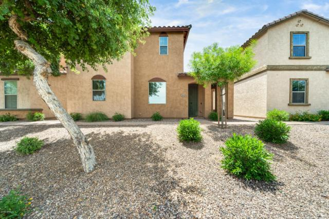 4710 W Fremont Road, Laveen, AZ 85339 (MLS #5926560) :: Realty Executives