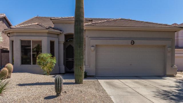 3055 N Red Mountain #215, Mesa, AZ 85207 (MLS #5926601) :: CC & Co. Real Estate Team
