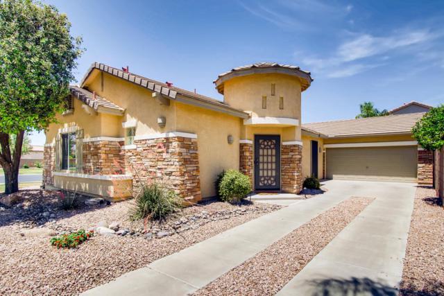 856 E Waterview Place, Chandler, AZ 85249 (MLS #5926604) :: CC & Co. Real Estate Team