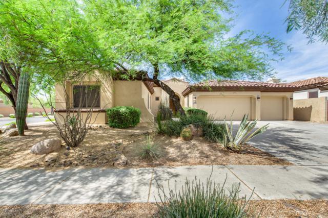 2016 W Forest Pleasant Place, Phoenix, AZ 85085 (MLS #5926612) :: CC & Co. Real Estate Team