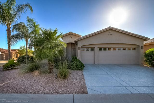 25016 S Golfview Drive, Sun Lakes, AZ 85248 (MLS #5926625) :: CC & Co. Real Estate Team