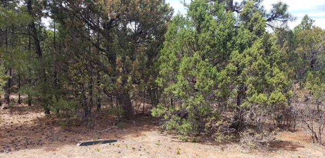 4220 W Redtwig Lane, Show Low, AZ 85901 (MLS #5926634) :: Riddle Realty Group - Keller Williams Arizona Realty