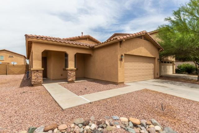 7410 W St Catherine Avenue, Laveen, AZ 85339 (MLS #5926637) :: Riddle Realty