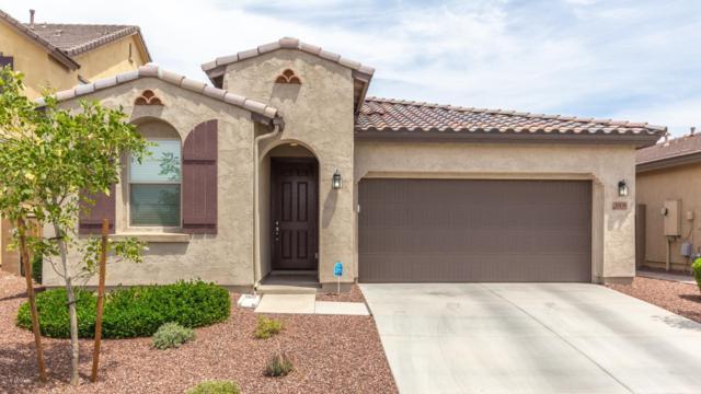 10138 W Los Gatos Drive, Peoria, AZ 85383 (MLS #5926674) :: CC & Co. Real Estate Team