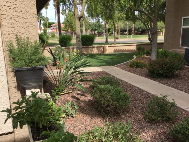 1633 E Lakeside Drive #31, Gilbert, AZ 85234 (MLS #5926682) :: CC & Co. Real Estate Team