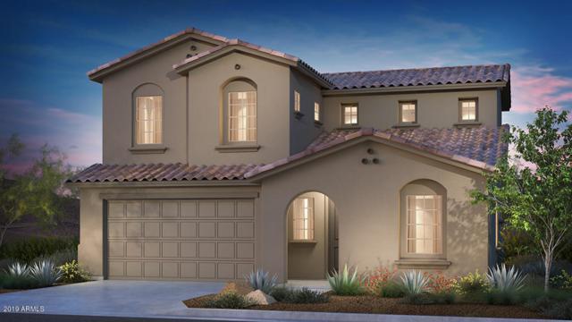 1051 N 70th Way, Scottsdale, AZ 85257 (MLS #5926704) :: CC & Co. Real Estate Team