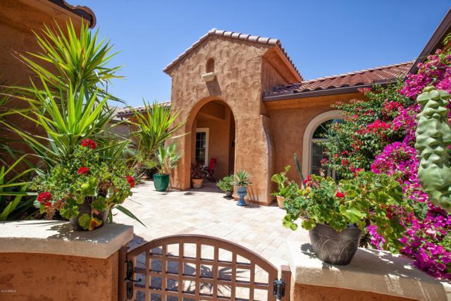 20266 N 268TH Avenue, Buckeye, AZ 85396 (MLS #5926720) :: Yost Realty Group at RE/MAX Casa Grande
