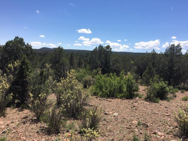 Lot 51 Weeping Willow Way, Kingman, AZ 86401 (MLS #5926745) :: The Results Group