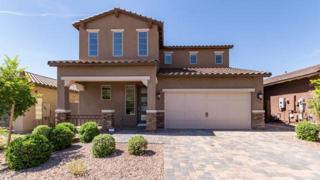 12715 W Caraveo Place, Peoria, AZ 85383 (MLS #5926756) :: CC & Co. Real Estate Team