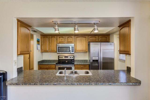 15007 N 35TH Drive, Phoenix, AZ 85053 (MLS #5926767) :: CC & Co. Real Estate Team