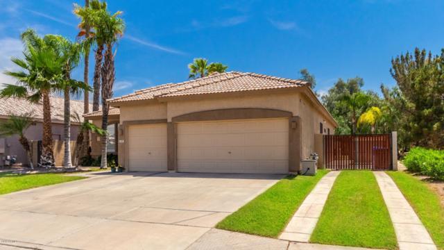 695 E Orchid Lane, Gilbert, AZ 85296 (MLS #5926791) :: CC & Co. Real Estate Team