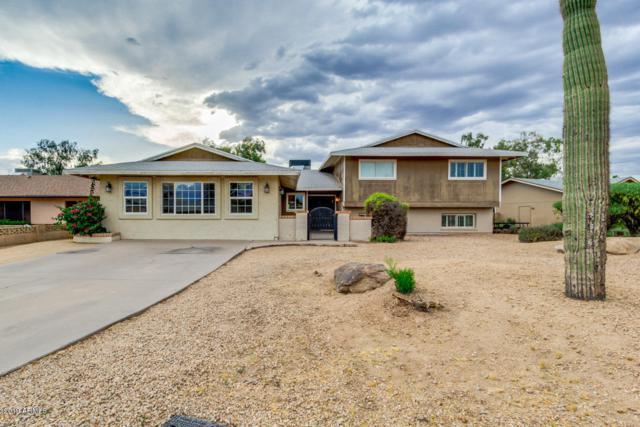 1026 E Carson Drive, Tempe, AZ 85282 (MLS #5926802) :: CC & Co. Real Estate Team