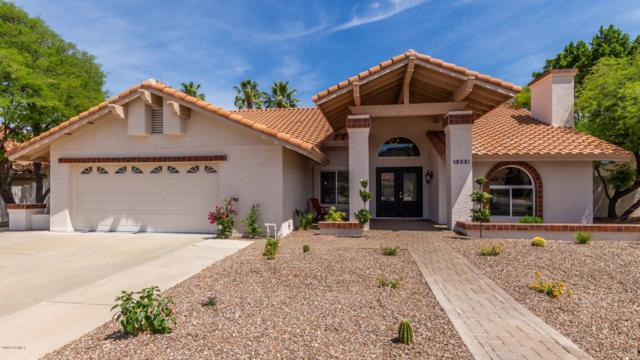 1252 E Monte Cristo Avenue, Phoenix, AZ 85022 (MLS #5926803) :: CC & Co. Real Estate Team