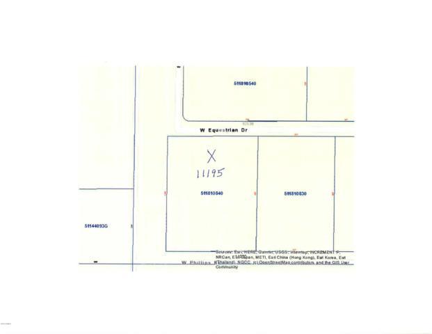 11195 W Equestrian Drive, Arizona City, AZ 85123 (MLS #5926812) :: CC & Co. Real Estate Team