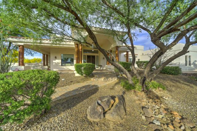 12 W Wildfield Road, New River, AZ 85087 (MLS #5926831) :: Yost Realty Group at RE/MAX Casa Grande