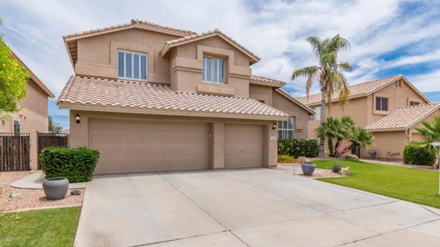 3471 S Beverly Place, Chandler, AZ 85248 (MLS #5926857) :: Revelation Real Estate