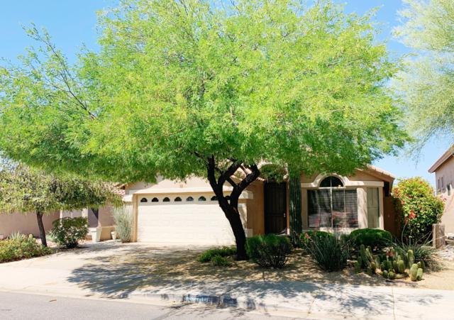 15280 N 102ND Street, Scottsdale, AZ 85255 (MLS #5926859) :: Team Wilson Real Estate