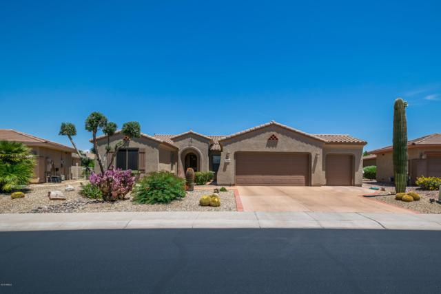 16390 W Bonita Park Drive, Surprise, AZ 85387 (MLS #5926875) :: CC & Co. Real Estate Team
