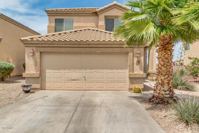 3710 W Morgan Lane, Queen Creek, AZ 85142 (MLS #5926885) :: Riddle Realty