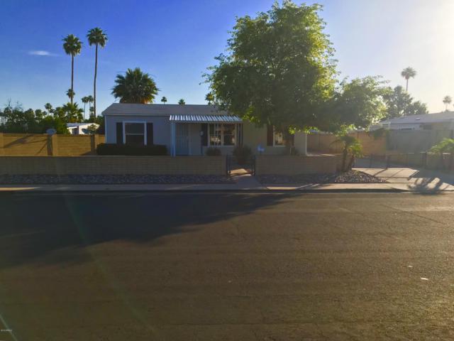 235 S Windsor, Mesa, AZ 85204 (MLS #5926903) :: CC & Co. Real Estate Team