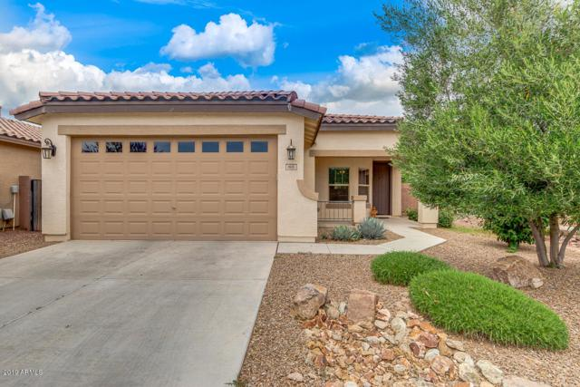 868 W Basswood Avenue, San Tan Valley, AZ 85140 (MLS #5926910) :: CC & Co. Real Estate Team
