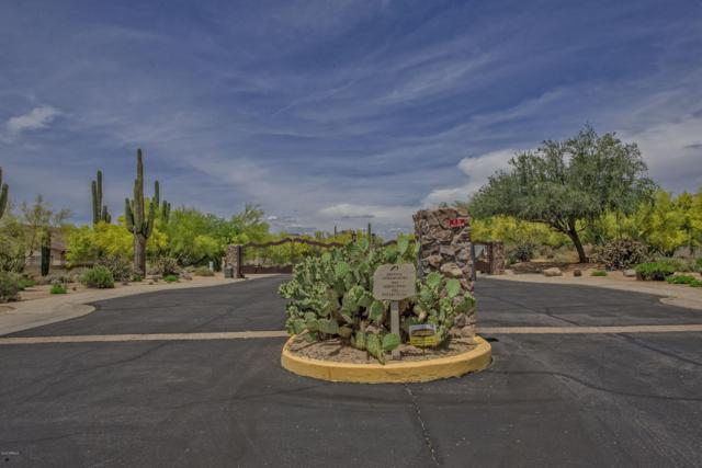 4659 E Laredo Lane, Cave Creek, AZ 85331 (MLS #5926916) :: Realty Executives