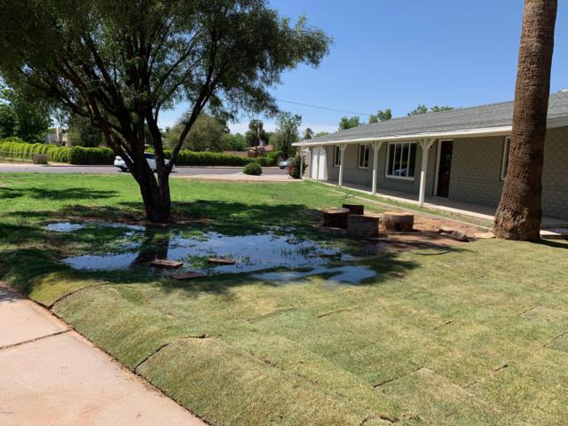 3835 N 36th Street, Phoenix, AZ 85018 (MLS #5926932) :: The Results Group