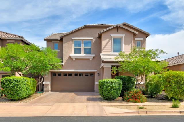 3318 W Gran Paradiso Drive, Phoenix, AZ 85086 (MLS #5926935) :: CC & Co. Real Estate Team