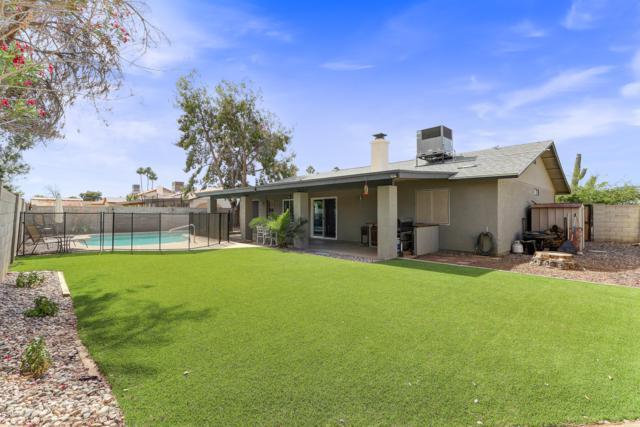 8822 W Hatcher Road, Peoria, AZ 85345 (MLS #5926937) :: CC & Co. Real Estate Team