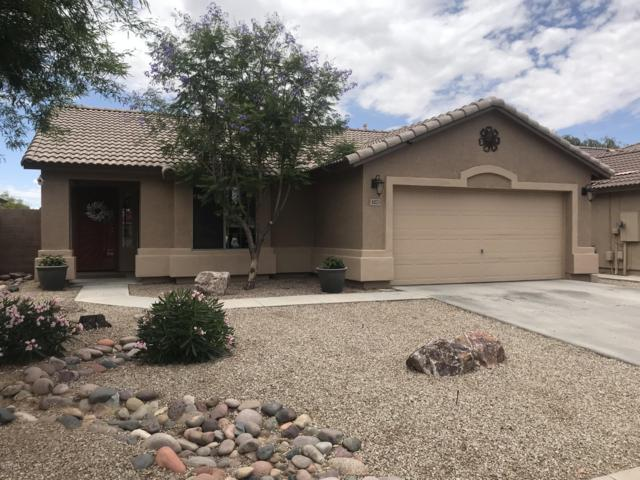 43371 W Chisholm Drive, Maricopa, AZ 85138 (MLS #5926945) :: CC & Co. Real Estate Team