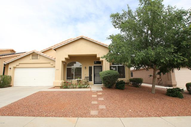 19637 N 15TH Place, Phoenix, AZ 85024 (MLS #5926978) :: CC & Co. Real Estate Team