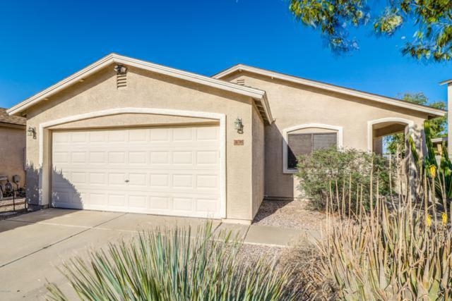 30395 N Bareback Trail, San Tan Valley, AZ 85143 (MLS #5926989) :: CC & Co. Real Estate Team