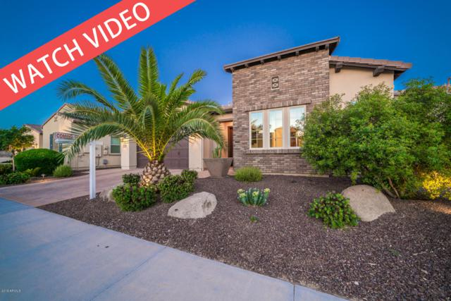 37285 N Wild Barley Path, Queen Creek, AZ 85140 (MLS #5926994) :: The Laughton Team