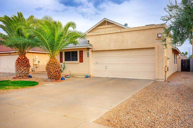 401 E Piute Avenue, Phoenix, AZ 85024 (MLS #5926998) :: CC & Co. Real Estate Team