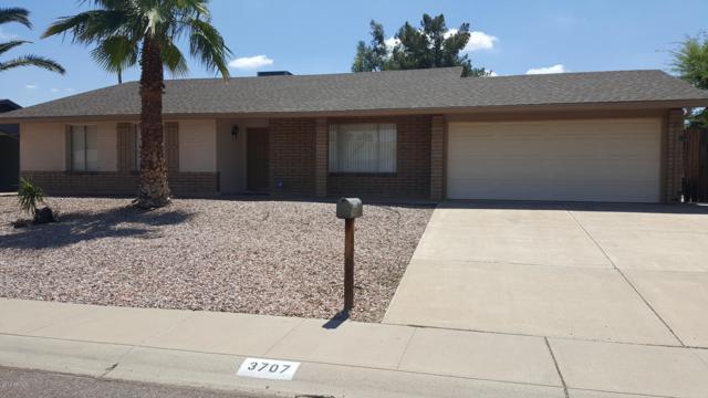 3707 E Bloomfield Road, Phoenix, AZ 85032 (MLS #5927005) :: The Kenny Klaus Team