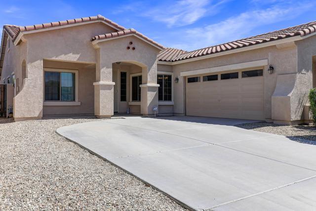 16776 W Magnolia Street, Goodyear, AZ 85338 (MLS #5927011) :: CC & Co. Real Estate Team