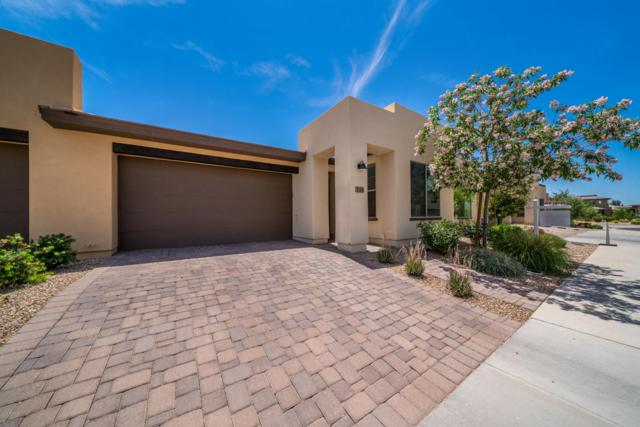 731 E Verde Boulevard, San Tan Valley, AZ 85140 (MLS #5927017) :: CC & Co. Real Estate Team