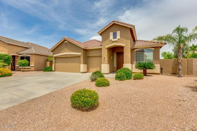 10432 W Cashman Drive, Peoria, AZ 85383 (MLS #5927022) :: The Results Group