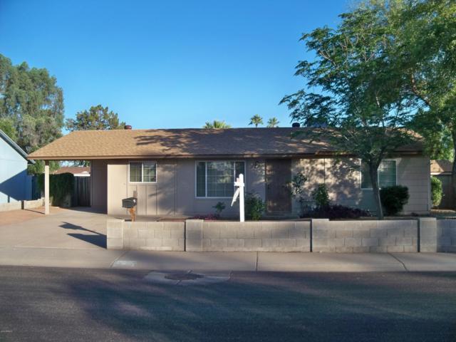 3309 E Helena Drive, Phoenix, AZ 85032 (MLS #5927036) :: CC & Co. Real Estate Team