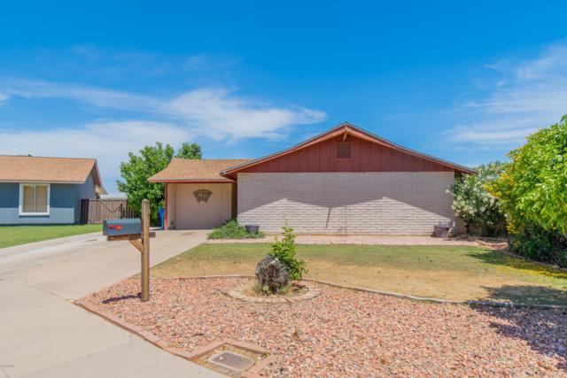 11423 N 37TH Drive, Phoenix, AZ 85029 (MLS #5927068) :: CC & Co. Real Estate Team
