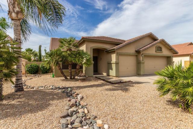 5516 E Glade Avenue, Mesa, AZ 85206 (MLS #5927069) :: CC & Co. Real Estate Team