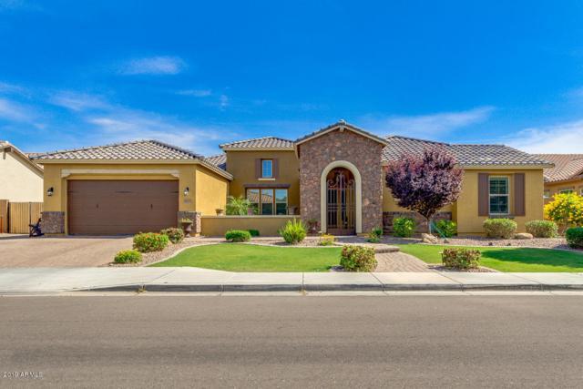 3855 E Ellis Street, Mesa, AZ 85205 (MLS #5927081) :: CC & Co. Real Estate Team