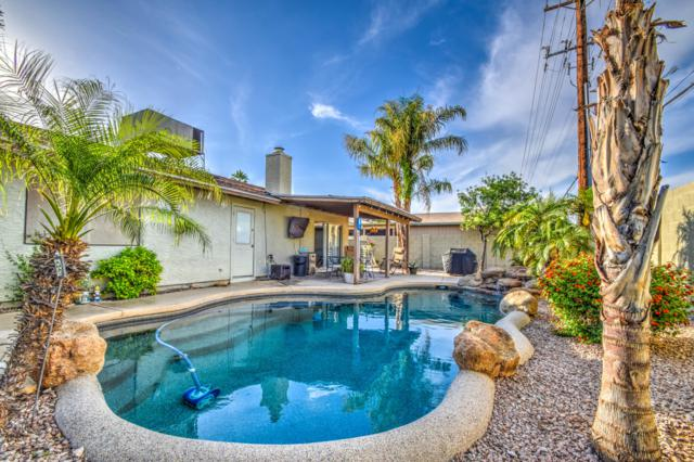10429 S 49TH Street, Phoenix, AZ 85044 (MLS #5927120) :: Yost Realty Group at RE/MAX Casa Grande
