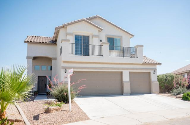 3203 W Goldmine Mountain Cove, Queen Creek, AZ 85142 (MLS #5927129) :: CC & Co. Real Estate Team