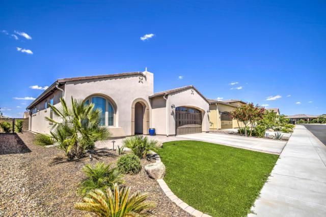 142 E Atacama Lane, San Tan Valley, AZ 85140 (MLS #5927142) :: Team Wilson Real Estate