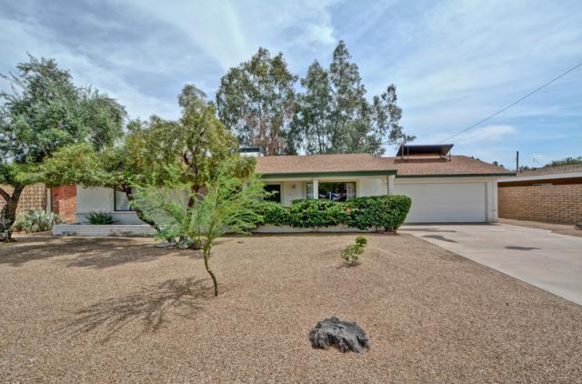 713 E Alameda Drive, Tempe, AZ 85282 (MLS #5927160) :: Yost Realty Group at RE/MAX Casa Grande