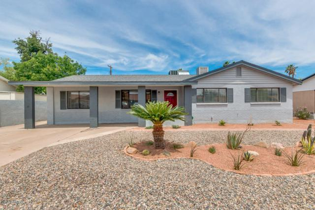 2420 W Echo Lane, Phoenix, AZ 85021 (MLS #5927168) :: CC & Co. Real Estate Team