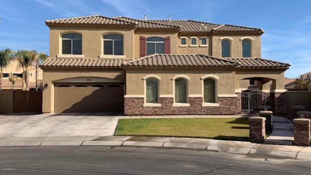 2322 E Jade Court, Chandler, AZ 85286 (MLS #5927182) :: CC & Co. Real Estate Team