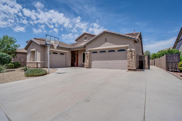 1644 E Grand Canyon Drive, Chandler, AZ 85249 (MLS #5927187) :: CC & Co. Real Estate Team
