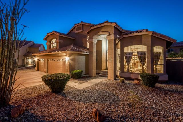 7830 W Taro Lane, Glendale, AZ 85308 (MLS #5927210) :: CC & Co. Real Estate Team